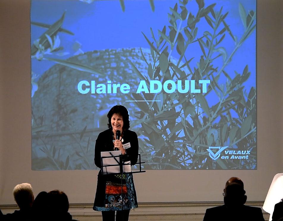 Réunion publique Velaux en Avant Claire ADOULT